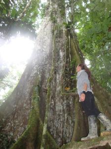 Participant looking up at tree